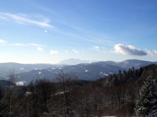 Tatry z Jaworzyny Kokuszczańskiej #góry #beskidy #BeskidSądecki #makowica #JaworzynaKokuszczańska
