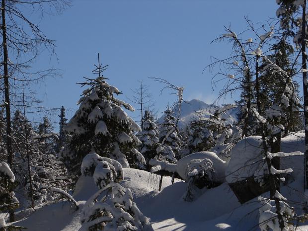 Na Wierch Porońcu #mróz #Tatry #Zima