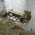 Eletrownia wodna na rzece Wieprz w Michalowie, zejście nad wodę #Michalów #ElektrowniaWodna #Wieprz