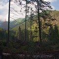 """Co może wiatr? (w podtytule: """"sianokosy"""" halnego) #góry #Lipiec2014 #Tatry #TatryZachodnie"""