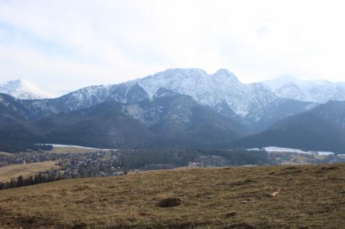Widok ze szlaku na Gubałówkę #góry #Tatry #Zakopane