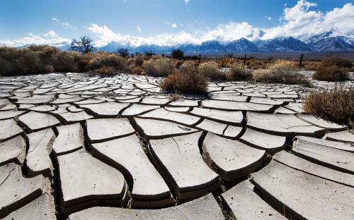 Kropla deszczu potrzebna... #przyroda #susza #widoki