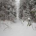 Kasina Wielka 14.03.2015 w drodze na Śnieżnicę... #arietiss #góry #krajobraz #zima