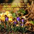 #święta #Wielkanoc #wiosna #życzenia