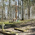 Olsztyn - Cmentarz Żołnierzy Rosyjskich z Iwś - 2015.04.11 #Allenstein #Olsztyn