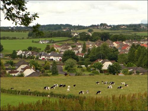 Pastwisko przed miasteczkiem Eaglesham..